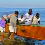 Josh lends a hand to local fishermen